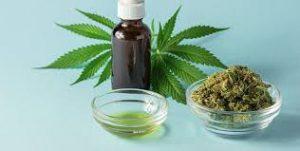 Cannabis Oil - Amazon - como usar - farmacia