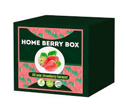 Home Berry Box - onde comprar - funciona - Portugal