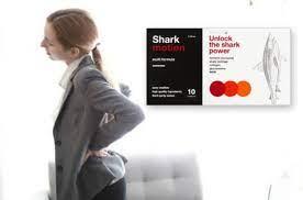 Shark Motion - onde comprar - no farmacia - no Celeiro - em Infarmed - no site do fabricante